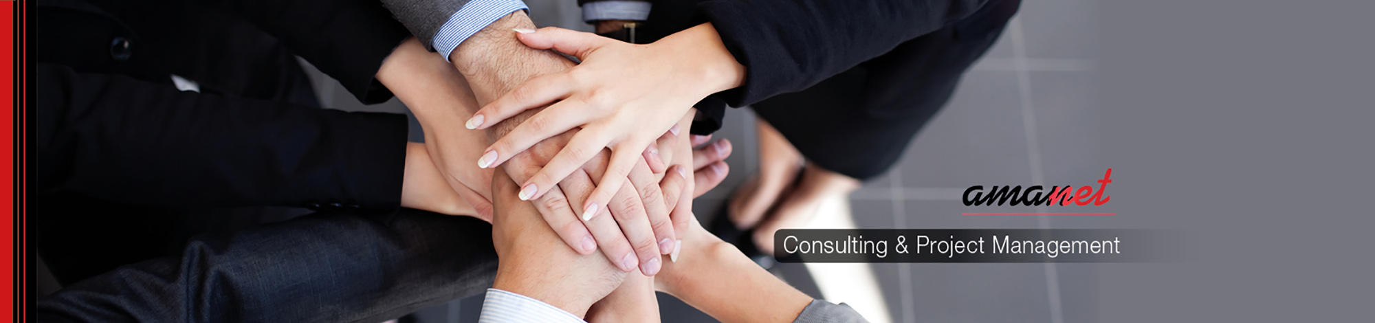 consulting & project management